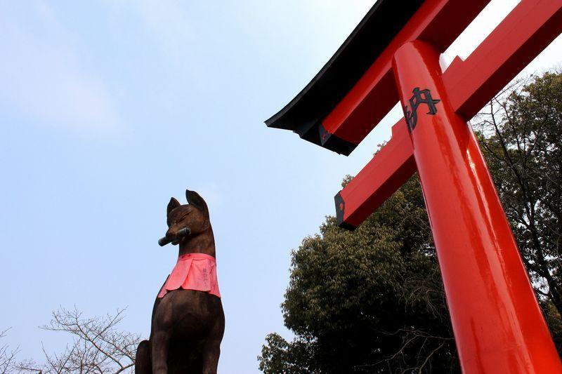 Fushimi-Inari Shrine-a