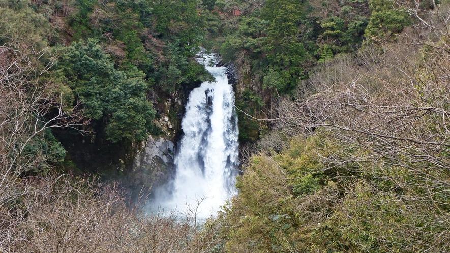 *【施設周辺】八反の滝でございます。春夏秋冬色んな表情を見せる滝です。