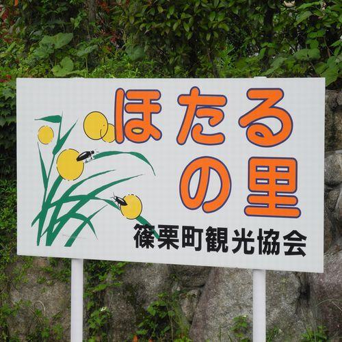 【篠栗町ほたるの里  ホテルより車で約20分】鳴淵ダム下流になります