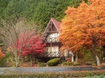 三角屋根の二階建てC棟付近の紅葉