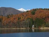 青木湖と冠雪