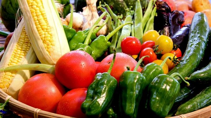 【夕食のみ】夜だけしっかり食べたい派!南会津で採れた自家栽培野菜料理と小豆温泉に浸かる旅♪