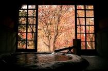 秋客室専用半露天風呂