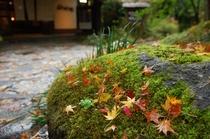 秋紅葉 玄関前2
