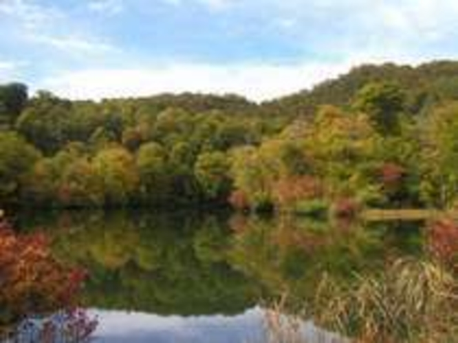 紅葉の鎌池