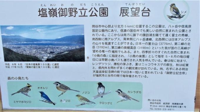 【1日3組限定】【小鳥の巣箱づくり体験】ファミリープラン☆☆