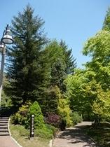 春の渓流植物園