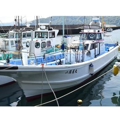 【1日1組限定/釣り竿・無料レンタル付】舟で海釣り☆釣った魚は調理します♪お手軽海釣りプラン