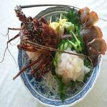 ★料理長・店主が厳選の高級食材の活伊勢海老のお造りををご堪能下さい