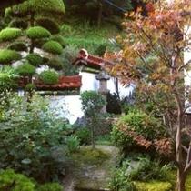 創業時より手入れの純日本庭園の中庭の「水琴窟」はたおやかに琴の調べを奏でます。