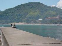 見高湾の堤防