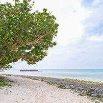 *カイジ浜:遊泳は禁止ですが、木陰もある美しい浜で、のんびりできます。