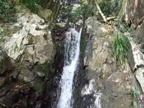 敷地沿渓流(滝)