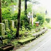 ☆周辺・景色_道路