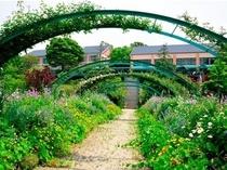 『モネの庭』花の庭