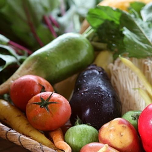 多くのお客さまからご好評いただいている、真奈邸でふんだんに使われる新鮮な有機野菜