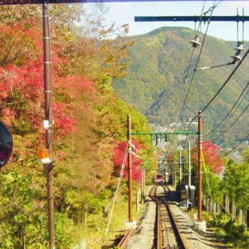 ~箱根登山線~日本有数の紅葉名所でもあります「箱根」にお越しください。