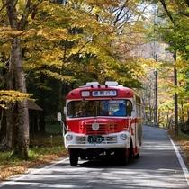 ◆【ボンネットバス「馬瀬川号」】新緑や紅葉の馬瀬川沿いを巡る
