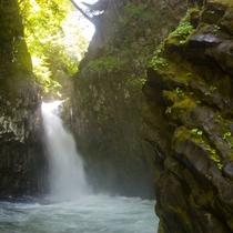 ◆【からたに滝】落差15m、幅5m