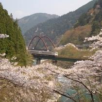 ◆【中山七里】四季折々美しい風景が楽しめる中山七里