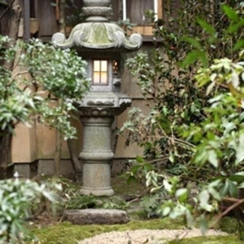 胡桃 お庭