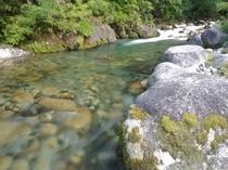 旅館前の川