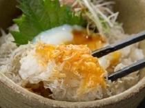 朝食・地元江口産シラスを温かいご飯にのせて