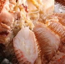 北海道から直送 ほくほくふっくら美味しい毛蟹