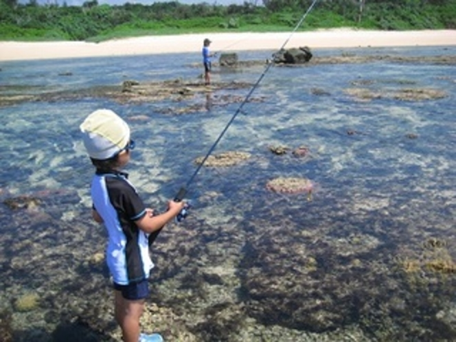 期間限定、時間限定の干潟遊び、お子様も楽しめます。