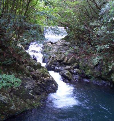 奄美大島の渓流