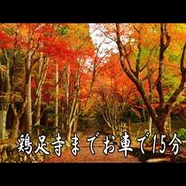 関西紅葉ランキング上位の鶏足寺まで15分の好立地♪圧巻の景色をお楽しみください。
