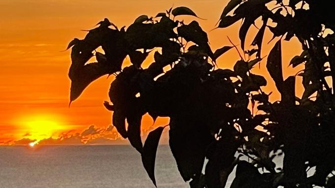 【素泊まり】古宇利島から沖縄北部を満喫!シンプルステイプラン★★