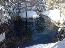 神の子池 冬