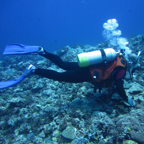 ダイビングスポットが多数あるヨロンは、「東洋の真珠」と呼ばれています♪