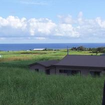 サトウキビ畑の向こうに青い海が見えるお部屋もございます♪