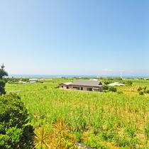 【和室6畳(海側)】客室からの景色