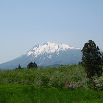 津軽富士 岩木山とりんご畑