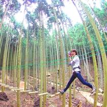 【フォレストアドベンチャー】大自然の中でアドベンチャー体験!