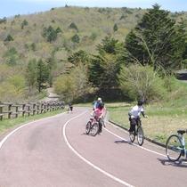 【サイクリングロード】自転車に乗って自然を満喫