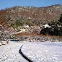 冬の梅林公園