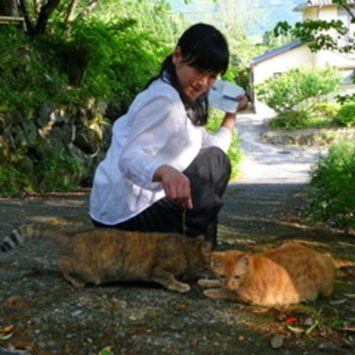 お庭で、おとなしい猫ちゃんと遊べます。(猫が苦手な方はご遠慮くださいませ)