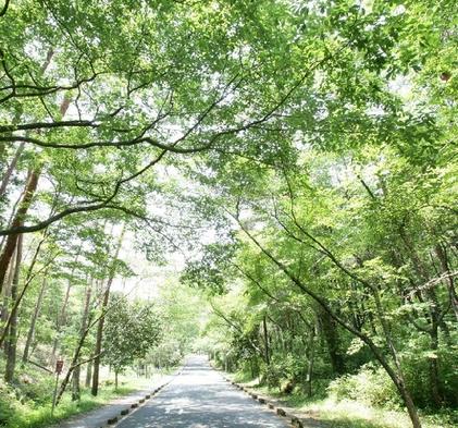 四季の森・寛ぎプラン