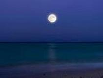 月夜もなかなか…