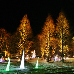 幻想的な信州の冬旅。【写真:軽井沢ウィンターフェスティバル】