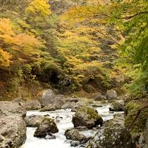 *【小原渓谷】渓流の音と紅葉を楽しめる隠れた名所。【当館から車で約10分】