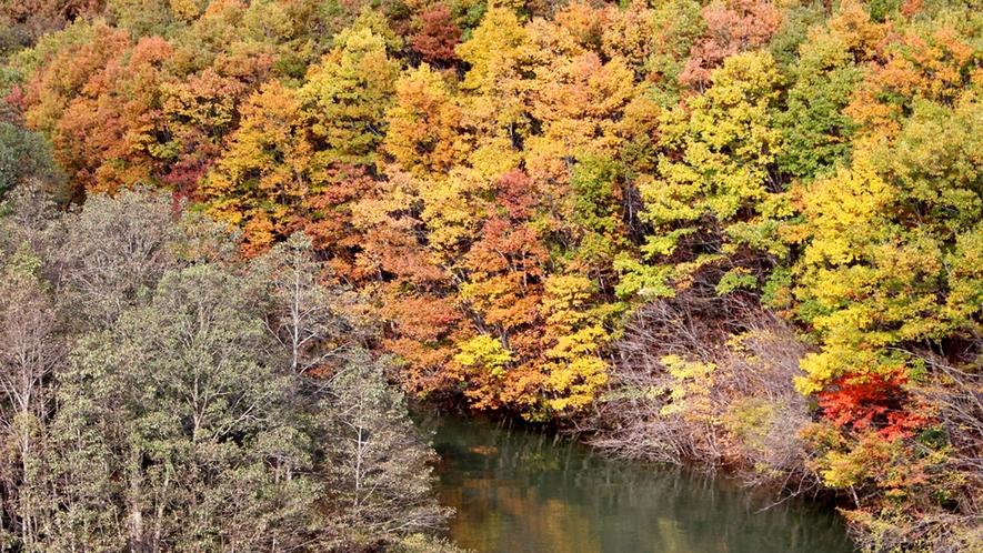 *【七ヶ宿ダム】紅葉した山々とダムの深緑が美しく映えます。【当館から車で約20分】