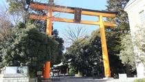 【川越氷川神社】あらゆる縁を結んでくれるパワースポットとして有名な神社です!