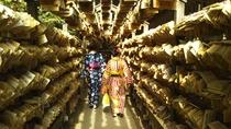 【川越氷川神社】多くの願いが書かれた絵馬トンネルをくぐると、自分の願いが叶うかも。