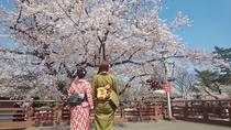 【喜多院】お花見スポット。