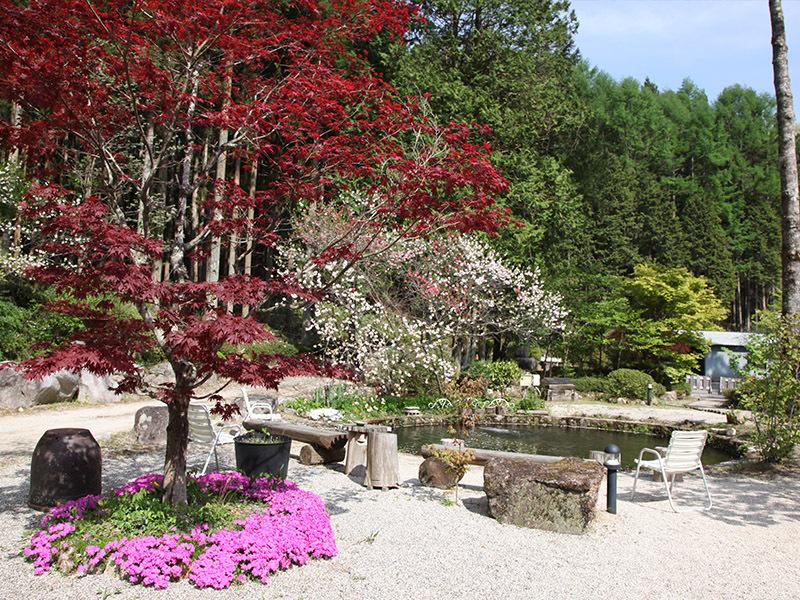 春の庭と池